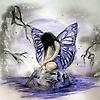 Butterfly_180720